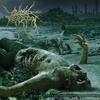 Couverture de l'album The Anthropocene Extinction