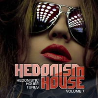 Cover of the track Hedonism House, Vol. 7