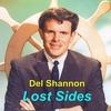 Couverture de l'album Lost Sides
