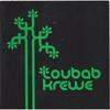 Couverture de l'album Toubab Krewe