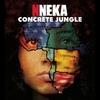 Couverture de l'album Concrete Jungle