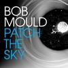 Couverture de l'album Patch The Sky