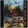 Couverture de l'album Timanfaya