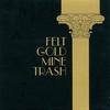 Couverture de l'album Gold Mine Trash