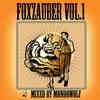 Couverture de l'album Foxzauber, Vol. 1 (Mixed By MondoWolf)