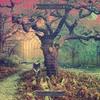 Couverture de l'album Crooked Doors