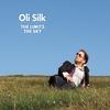 Couverture de l'album The Limit's the Sky