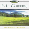 Cover of the album Pat Murphy's Meadow