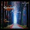 Couverture de l'album Sanctuary