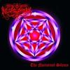 Couverture de l'album The Nocturnal Silence
