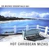 Cover of the album Hot Caribbean Miziks