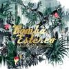 Couverture de l'album Elegancia Tropical