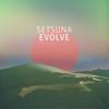 Couverture de l'album Evolve (Bonus Track Edition)