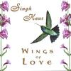 Couverture de l'album Wings of Love