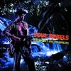 Couverture de l'album Soul Rebels