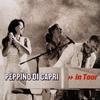 Couverture de l'album Peppino di Capri - In Tour