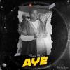 Couverture de l'album Aye - Single