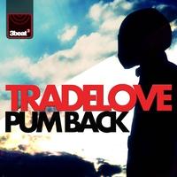 Couverture du titre Pum Back - Single