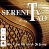 Couverture de l'album Serenity Tao (Music for Tai Chi & Qi Qong)
