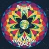 Couverture de l'album Invisible Joy