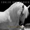 Couverture de l'album If Wishes Were Horses, Beggars Would Ride