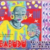 Cover of the album Babudu Lullabies