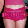 Cover of the album The Teaches of Peaches