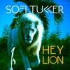 Couverture de l'album Hey Lion - Single