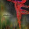 Cover of the album Etnotronica