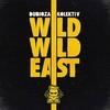 Couverture de l'album Wild Wild East