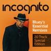 Couverture de l'album Bluey's Essential Remixes - 20 Track Special Edition