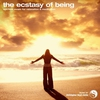 Cover of the album The Ecstasy of Being - Single