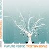 Couverture de l'album Future Fabric