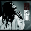 Couverture de l'album Rasta Got Soul