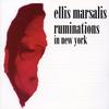 Couverture de l'album Ruminations in New York