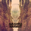 Cover of the album Blackwater Holylight