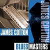 Cover of the album Blues Masters