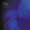Cover of the album Divine Shadows