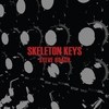 Couverture de l'album Skeleton Keys