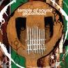 Couverture de l'album Globalhead