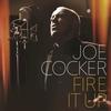 Couverture de l'album Fire It Up