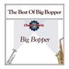 Cover of the album The Best of Big Bopper