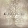 Cover of the album Vine