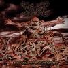 Couverture de l'album Debasement Incarnated - EP