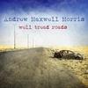 Couverture de l'album Well Tread Roads