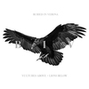 Couverture de l'album Vultures Above, Lions Below