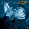 Couverture de l'album Giant
