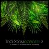 Couverture de l'album Toolroom Goes Deep 3