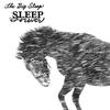 Cover of the album Sleep Forever