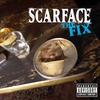 Cover of the album The Fix